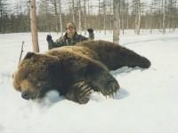 150-Bear-3-200x150