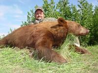 69-Bear-1-200x150