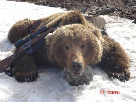 Alaska-100-2010-brownie