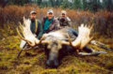 Alaska-100-Moose-Pic1