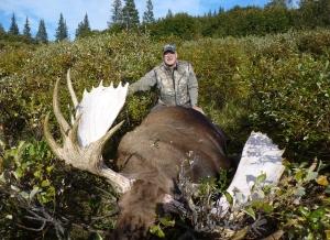 Alaska-100-Tims-2013-moose-300x218