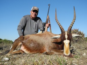 So. Africa #6 blesbuck 17.5inch 2012 Scott Mac