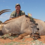 roan with bow