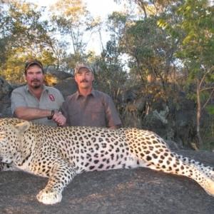 leopard-hunt-zimbabwe-13-lxzpktr5149hny7dbho5ff0w9jcmh0imcmvm0d79fs-300x300