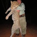 leopard-hunt-zimbabwe