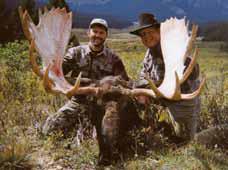 CO8-shiras-moose