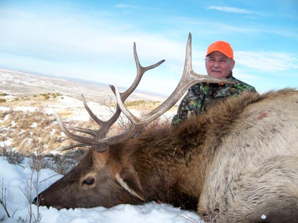 COLORADO RFW ELK, MULE DEER and ANTELOPE Hunt # 238 - Hunt