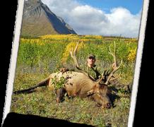 BC-125-Elk-2012-218x180