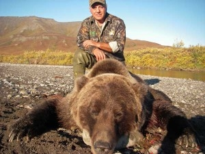 Alaska-211-Brown-Bear-pic-300x225