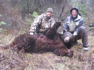 ID-103-bear-pic-300x225