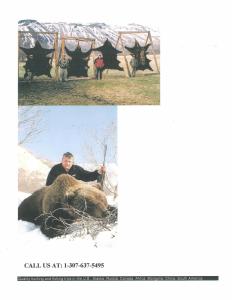 Russia-160-Brown-Bear-Pics-2-232x300