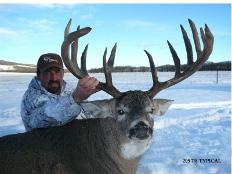 BC-2-Deer1-2007