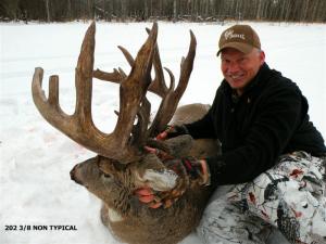 BC-2-Deer2-2008-300x225