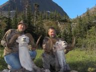 sheep-hunting-2012-03