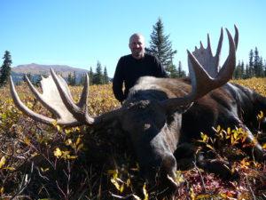BC-151-Moose-2012-pic-300x225