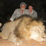 lion hinting