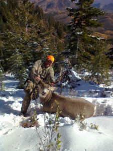 ID #218 mulie taken by 2011 client