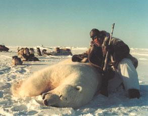 NWT-1-polar-bear