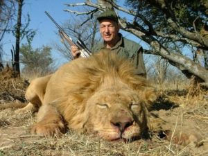 South Africa Lion, Leopard, Buffalo, Plains Game #204 - Hunt