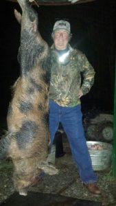 hogs213-3-169x300