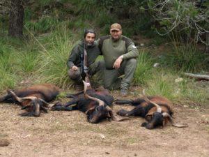 Spain-271-Balerian-Boc-3-animals-300x225