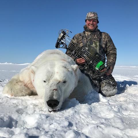2017 archery bear
