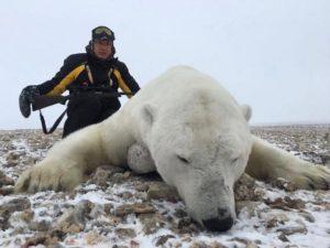 great-bear-shot-300x225