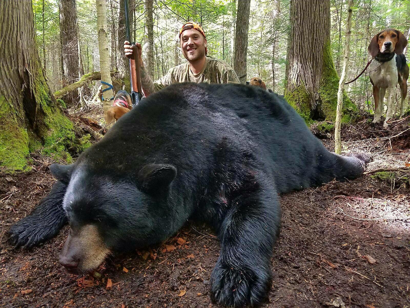 ME-207-600-lb-bear