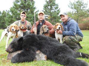 ME-207-hound-bear-300x225