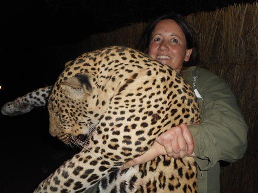 Tanzania-295-big-leopard-2