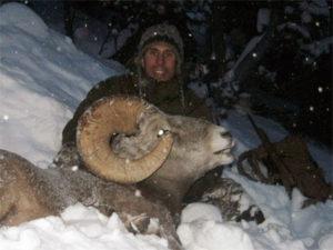 251.2012-cloutier-bighorn-sheep-ram-300x225
