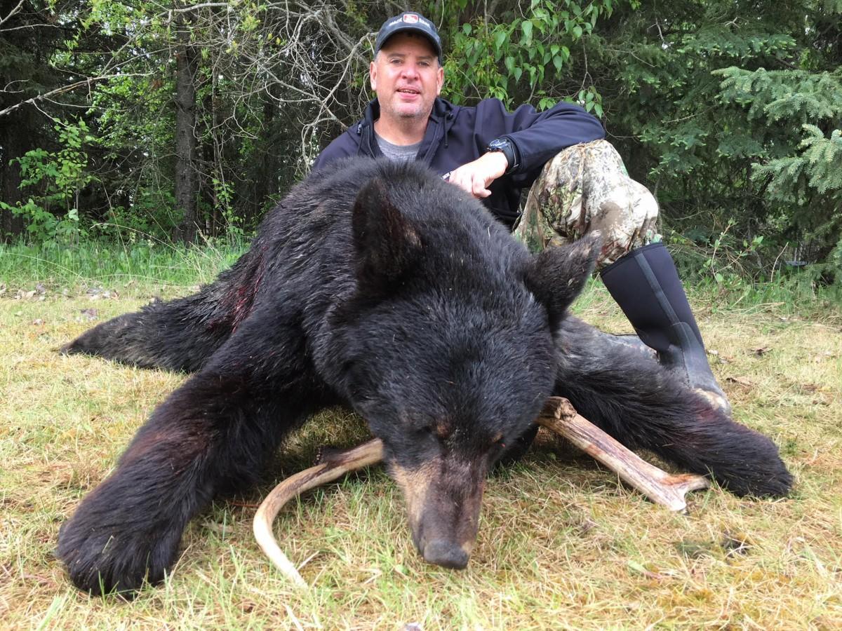 AB-286-very-nice-2018-spring-bear