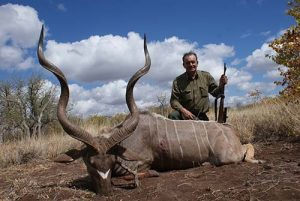 ZIM-209-terrific-kudu-1-300x201